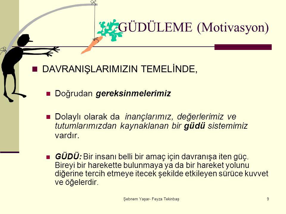 Şebnem Yaşar- Feyza Tekinbaş30 Blake ve Mouton'un Yönetim Skalası 9.9 Ekip Liderliği (Kaplan): Hem göreve hem de kişiye en fazla önem veren liderlik biçimidir.