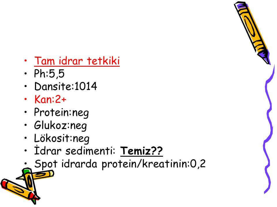 Tam idrar tetkiki Ph:5,5 Dansite:1014 Kan:2+ Protein:neg Glukoz:neg Lökosit:neg İdrar sedimenti: Temiz?.