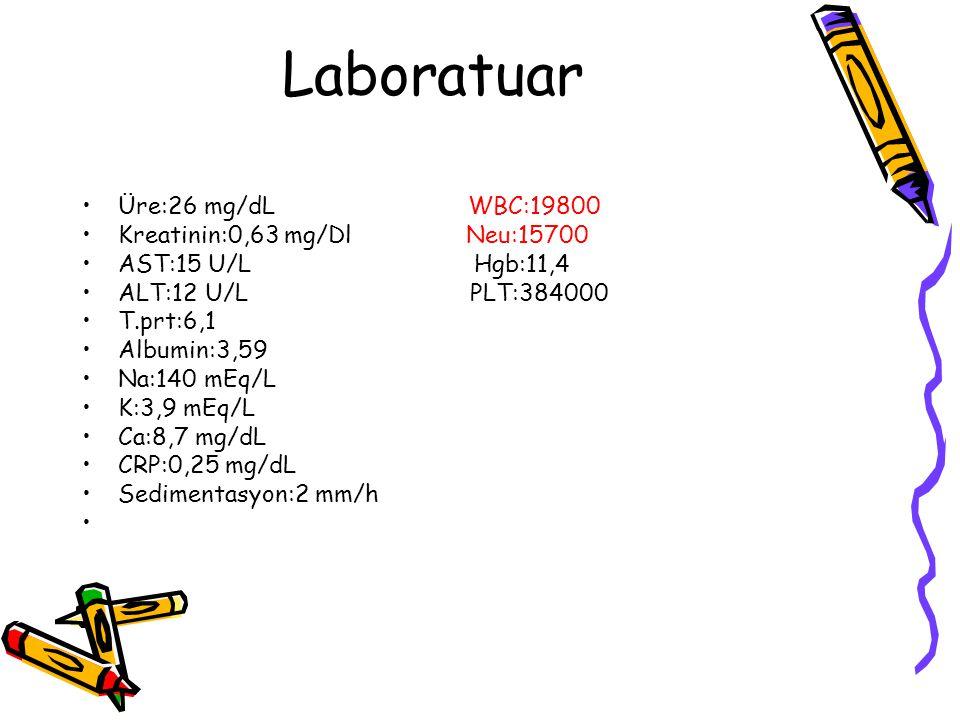 Laboratuar Üre:26 mg/dL WBC:19800 Kreatinin:0,63 mg/Dl Neu:15700 AST:15 U/L Hgb:11,4 ALT:12 U/L PLT:384000 T.prt:6,1 Albumin:3,59 Na:140 mEq/L K:3,9 mEq/L Ca:8,7 mg/dL CRP:0,25 mg/dL Sedimentasyon:2 mm/h
