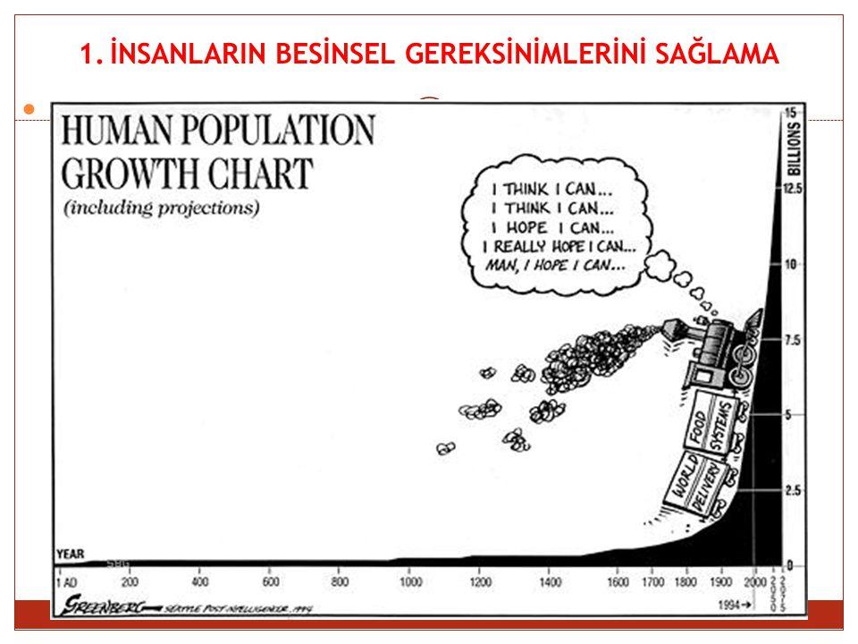 Malthus' Theory of Population Growth  1798 yılında Thomas Malthus Essay on the Principles of Population adlı eserinde gıda arzı üzerinde nüfusun etkisi hakkındaki görüşlerini yayınladı.