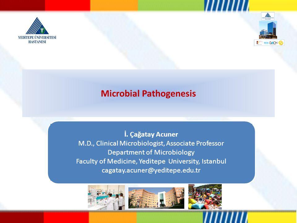 Etken-konak etkileşimi belirleyen faktörleri ve tanımlarını söyleyebilmeli Patojen mikroorganizmayı tanımlayabilmeli Patojen olmayan mikroorganizmayı tanımlayabilmeli Fırsatçı patojeni tanımlayabilmeli Patojeniteyi tanımlayabilmeli Virulansı tanımlayabilmeli Virulans faktörlerini sayabilmeli Virulans faktörlerinin doku hasarındaki önemini açıklayabilmeli Ekzotoksin ve endotoksin arasındaki farkları sayabilmeli Ekzotoksin ve endotoksinin doku hasarındaki önemini açıklayabilmeli Aderans kavramını tanımlayabilmeli İnvazyon kavramını tanımlayabilmeli Toksijenite kavramını tanımlayabilmeli Enfeksiyon kavramını tanımlayabilmeli Enfeksiyöz doz kavramını tanımlayabilmeli Taşıyıcı kavramını tanımlayabilmeli Öğrenme Hedefleri