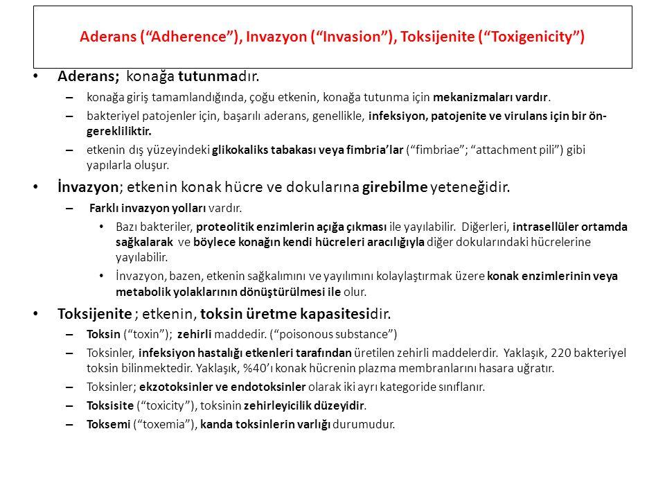 Aderans ( Adherence ), Invazyon ( Invasion ), Toksijenite ( Toxigenicity ) Aderans; konağa tutunmadır.