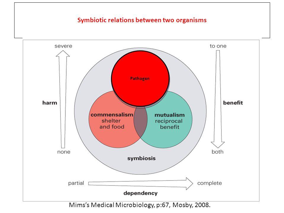 Parazitizm Tek taraflı yarar Kommensalizm Barınak ve besin Mutualizm Karşılıklı yarar Simbiyozis İki canlı arasındaki simbiyotik ilişki biçimi olasılıkları Mims's Medical Microbiology, p:67, Mosby, 2008.