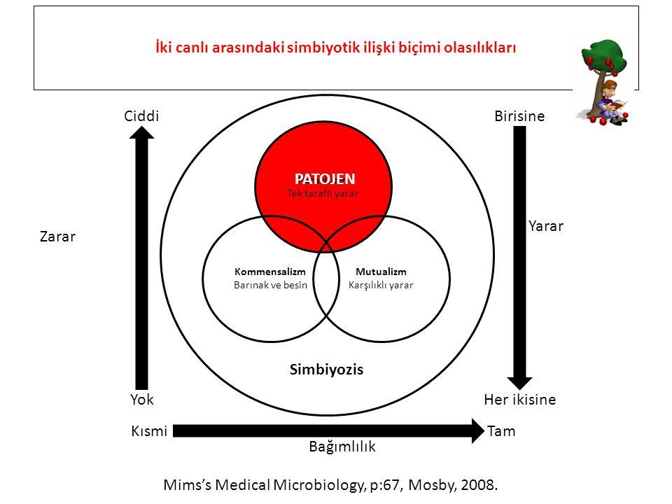 Parazitizm Tek taraflı yarar Kommensalizm Barınak ve besin Mutualizm Karşılıklı yarar Simbiyozis İki canlı arasındaki simbiyotik ilişki biçimi olasılı