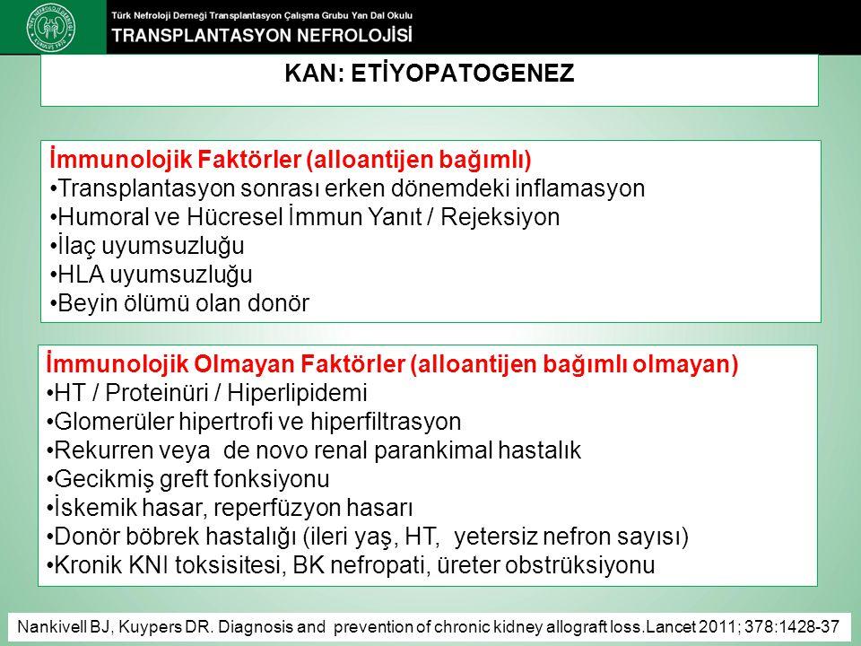 KAN: ETİYOPATOGENEZ İmmunolojik Faktörler (alloantijen bağımlı) Transplantasyon sonrası erken dönemdeki inflamasyon Humoral ve Hücresel İmmun Yanıt / Rejeksiyon İlaç uyumsuzluğu HLA uyumsuzluğu Beyin ölümü olan donör İmmunolojik Olmayan Faktörler (alloantijen bağımlı olmayan) HT / Proteinüri / Hiperlipidemi Glomerüler hipertrofi ve hiperfiltrasyon Rekurren veya de novo renal parankimal hastalık Gecikmiş greft fonksiyonu İskemik hasar, reperfüzyon hasarı Donör böbrek hastalığı (ileri yaş, HT, yetersiz nefron sayısı) Kronik KNI toksisitesi, BK nefropati, üreter obstrüksiyonu Nankivell BJ, Kuypers DR.