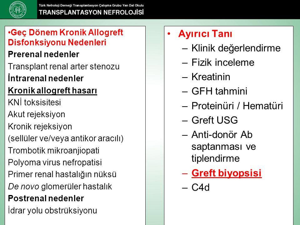 Ayırıcı Tanı –Klinik değerlendirme –Fizik inceleme –Kreatinin –GFH tahmini –Proteinüri / Hematüri –Greft USG –Anti-donör Ab saptanması ve tiplendirme