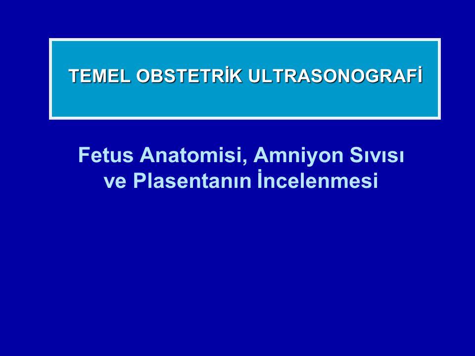 Fetus Anatomisi, Amniyon Sıvısı ve Plasentanın İncelenmesi TEMEL OBSTETRİK ULTRASONOGRAFİ