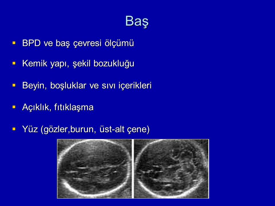 Baş  BPD ve baş çevresi ölçümü  Kemik yapı, şekil bozukluğu  Beyin, boşluklar ve sıvı içerikleri  Açıklık, fıtıklaşma  Yüz (gözler,burun, üst-alt çene)
