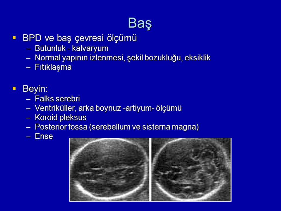 Baş  BPD ve baş çevresi ölçümü –Bütünlük - kalvaryum –Normal yapının izlenmesi, şekil bozukluğu, eksiklik –Fıtıklaşma  Beyin: –Falks serebri –Ventri