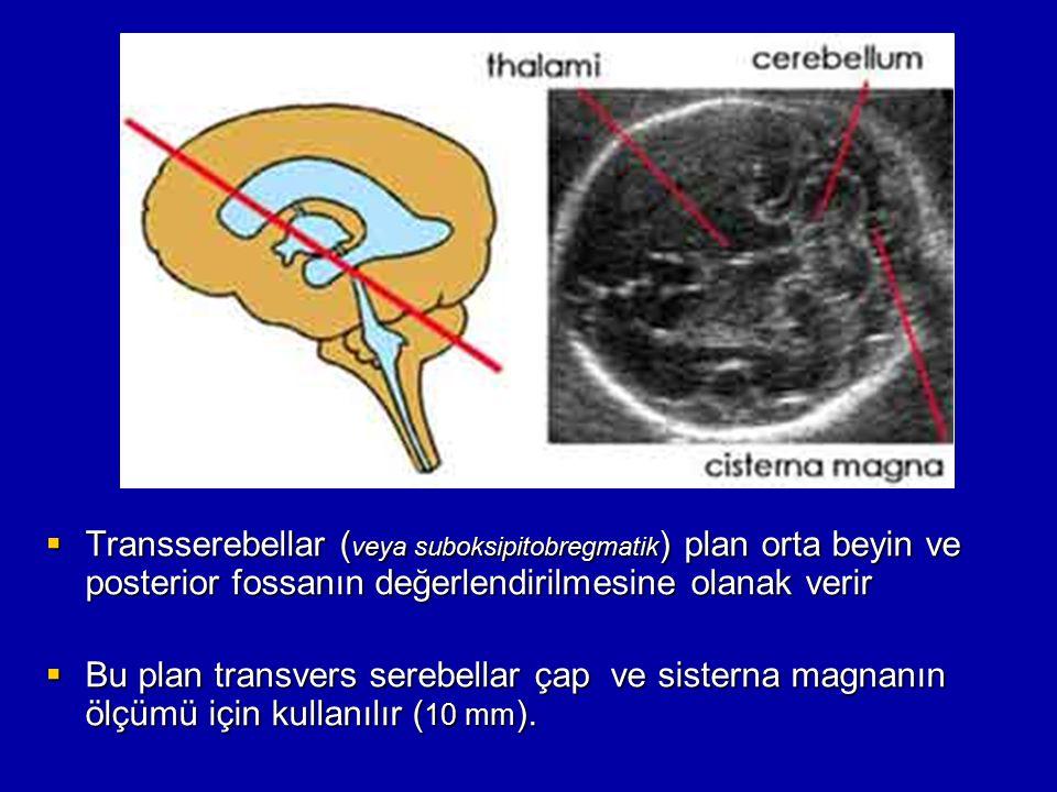  Transserebellar ( veya suboksipitobregmatik ) plan orta beyin ve posterior fossanın değerlendirilmesine olanak verir  Bu plan transvers serebellar