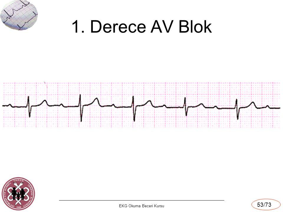 1. Derece AV Blok EKG Okuma Beceri Kursu 53/73