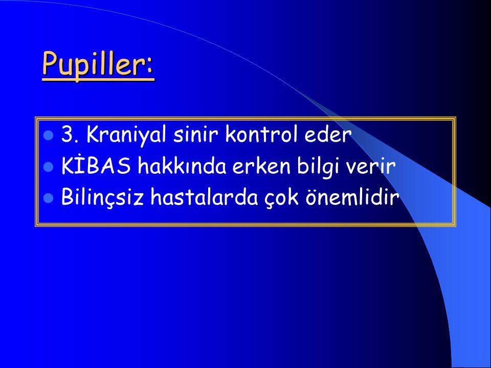 Pupiller: 3.