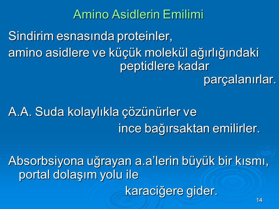 14 Amino Asidlerin Emilimi Sindirim esnasında proteinler, amino asidlere ve küçük molekül ağırlığındaki peptidlere kadar parçalanırlar. A.A. Suda kola
