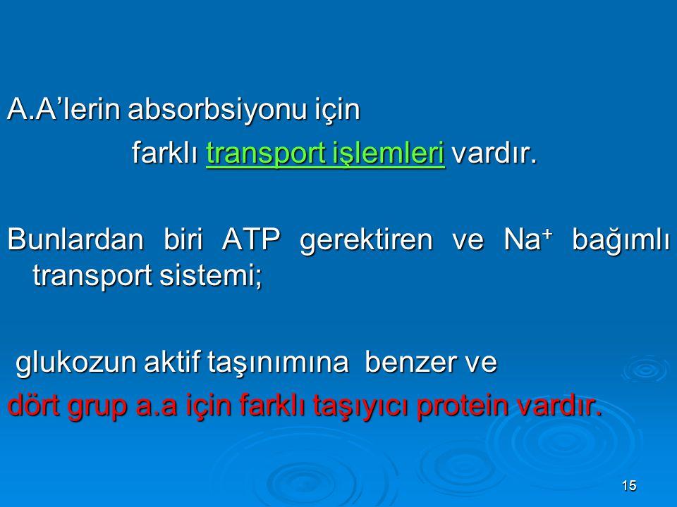 15 A.A'lerin absorbsiyonu için farklı transport işlemleri vardır. farklı transport işlemleri vardır. Bunlardan biri ATP gerektiren ve Na + bağımlı tra
