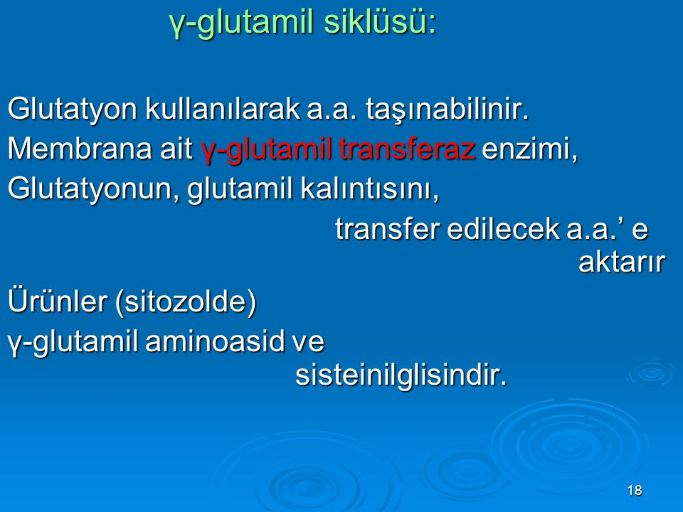 18 γ-glutamil siklüsü: γ-glutamil siklüsü: Glutatyon kullanılarak a.a. taşınabilinir. Membrana ait γ-glutamil transferaz enzimi, Glutatyonun, glutamil