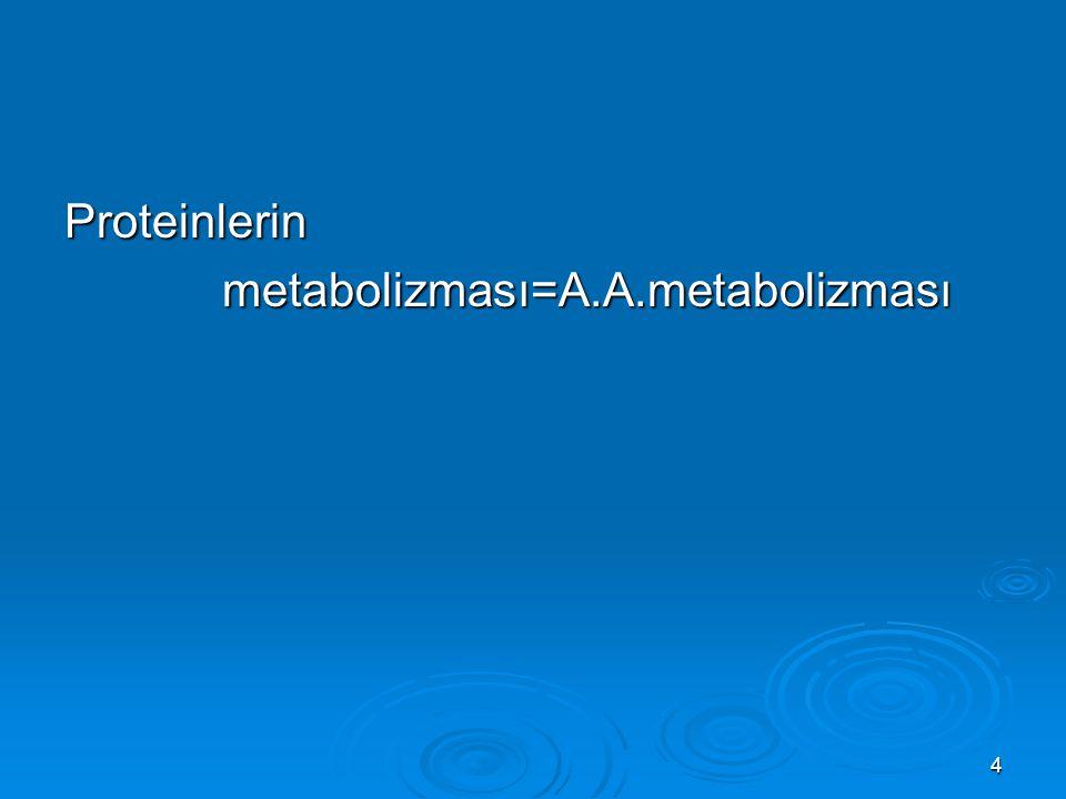 4 Proteinlerin metabolizması=A.A.metabolizması metabolizması=A.A.metabolizması