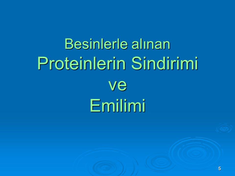 5 Besinlerle alınan Proteinlerin Sindirimi ve Emilimi