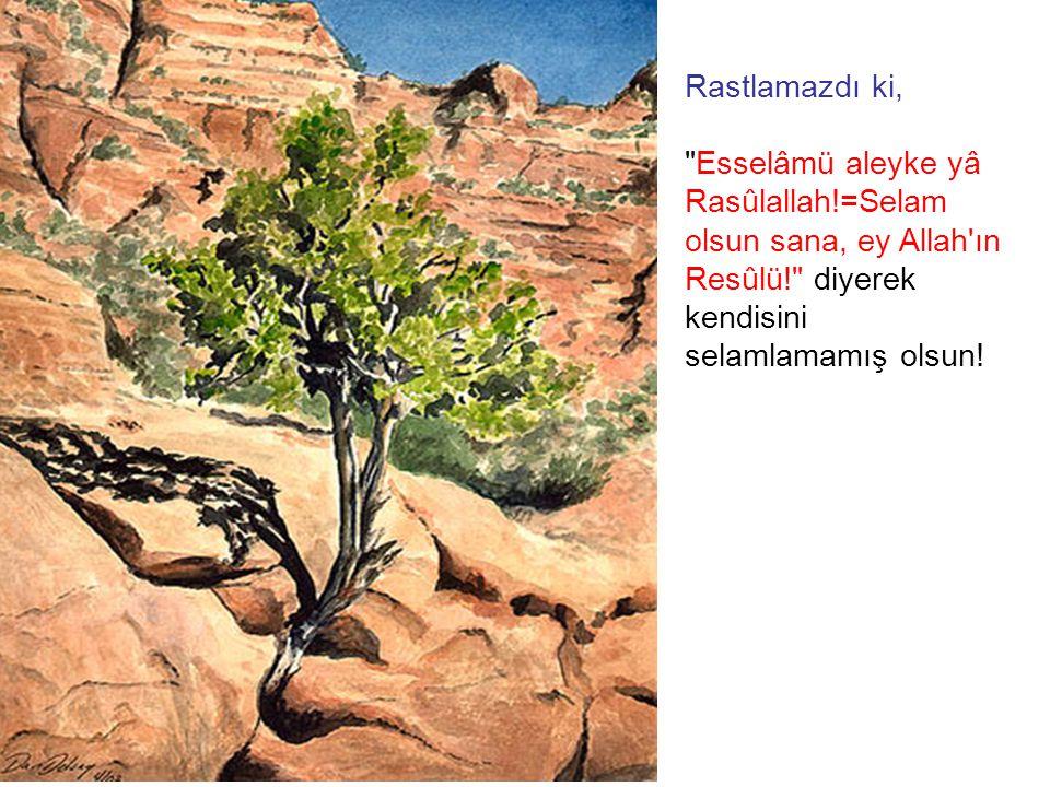 Rastlamazdı ki, Esselâmü aleyke yâ Rasûlallah!=Selam olsun sana, ey Allah ın Resûlü! diyerek kendisini selamlamamış olsun!