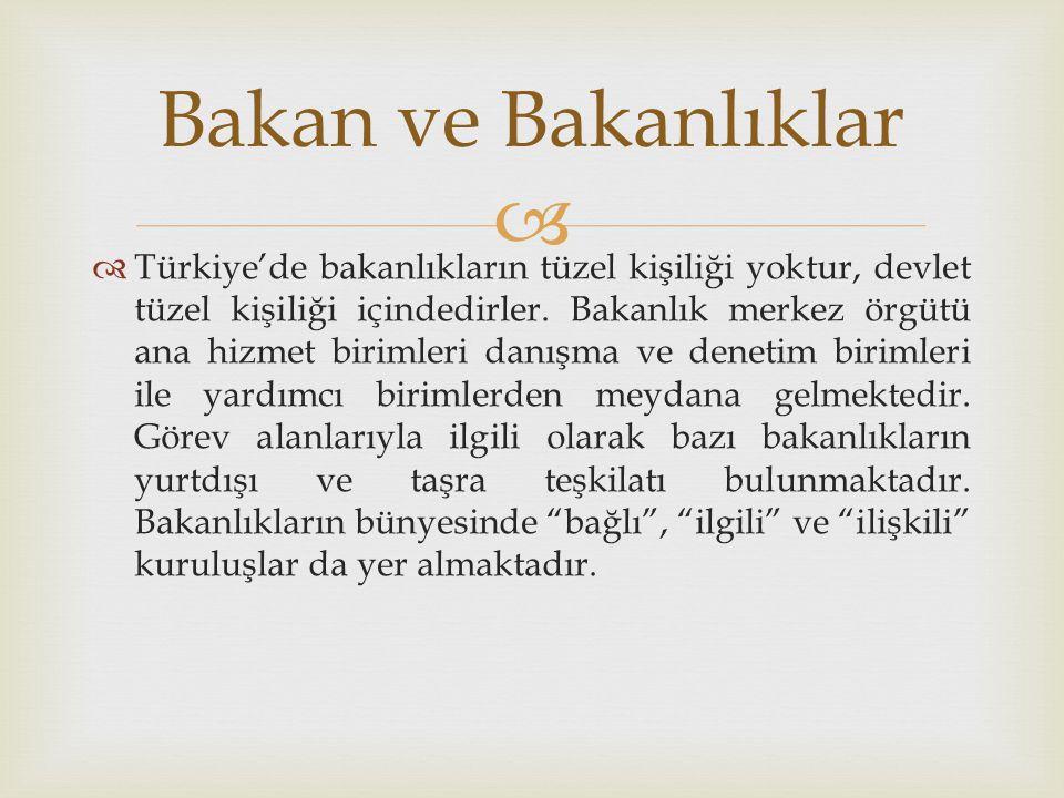   Türkiye'de bakanlıkların tüzel kişiliği yoktur, devlet tüzel kişiliği içindedirler. Bakanlık merkez örgütü ana hizmet birimleri danışma ve denetim
