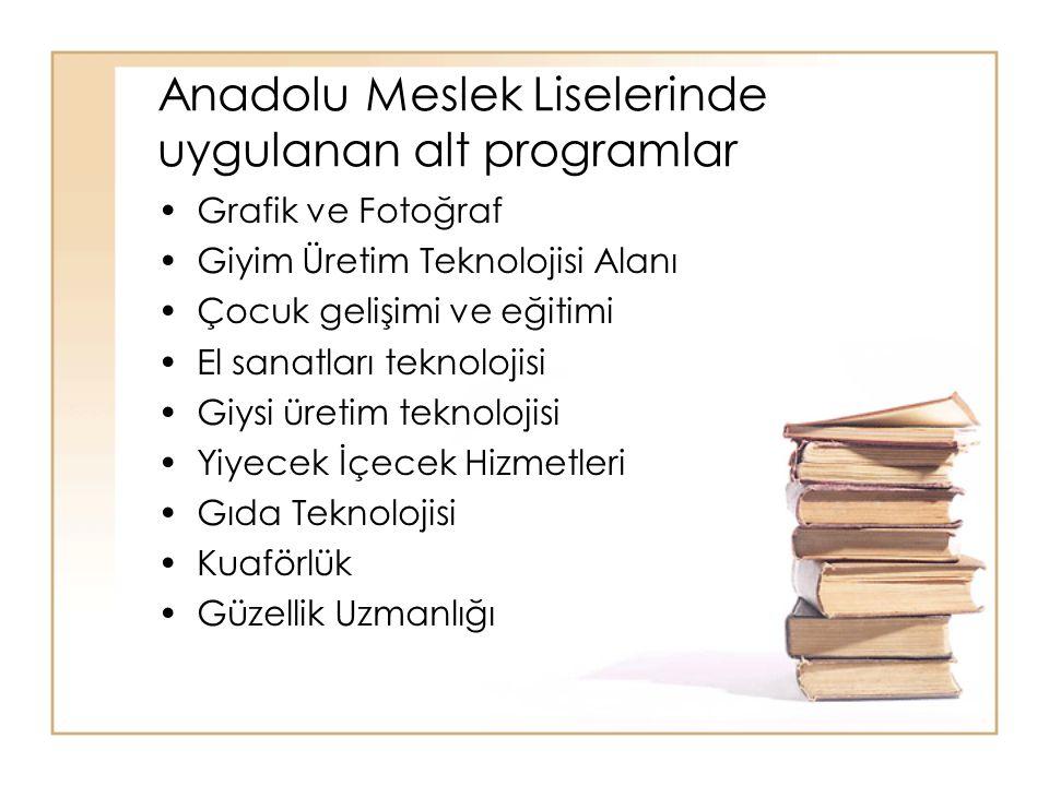 Anadolu Meslek Liselerinde uygulanan alt programlar Grafik ve Fotoğraf Giyim Üretim Teknolojisi Alanı Çocuk gelişimi ve eğitimi El sanatları teknoloji