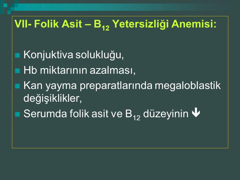 VII- Folik Asit – B 12 Yetersizliği Anemisi: Konjuktiva solukluğu, Hb miktarının azalması, Kan yayma preparatlarında megaloblastik değişiklikler, Seru