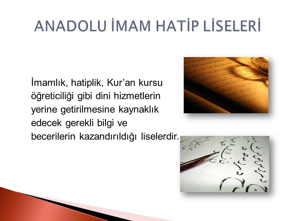 İmamlık, hatiplik, Kur'an kursu öğreticiliği gibi dini hizmetlerin yerine getirilmesine kaynaklık edecek gerekli bilgi ve becerilerin kazandırıldığı l