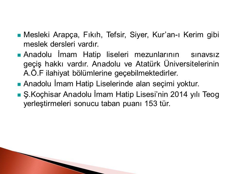 Mesleki Arapça, Fıkıh, Tefsir, Siyer, Kur'an-ı Kerim gibi meslek dersleri vardır. Anadolu İmam Hatip liseleri mezunlarının sınavsız geçiş hakkı vardır