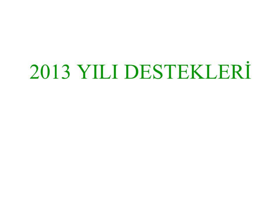 2013 YILI DESTEKLERİ