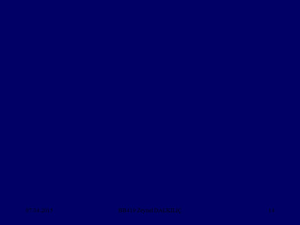 07.04.201514BB419 Zeynel DALKILIÇ