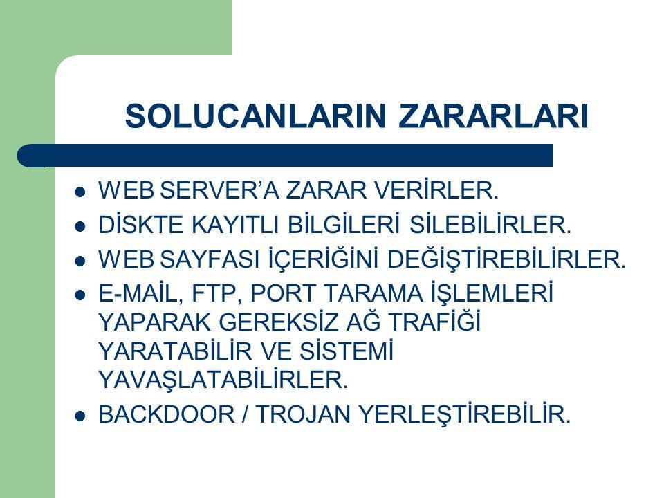 SOLUCANLARIN ZARARLARI WEB SERVER'A ZARAR VERİRLER.