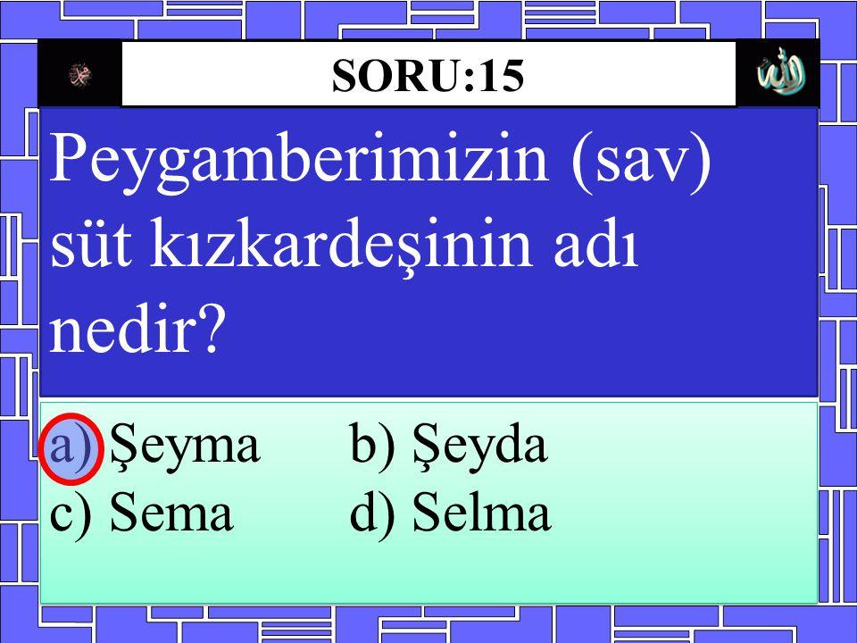 Peygamberimizin (sav) süt kızkardeşinin adı nedir? a) Şeyma b) Şeyda c) Sema d) Selma a) Şeyma b) Şeyda c) Sema d) Selma SORU:15