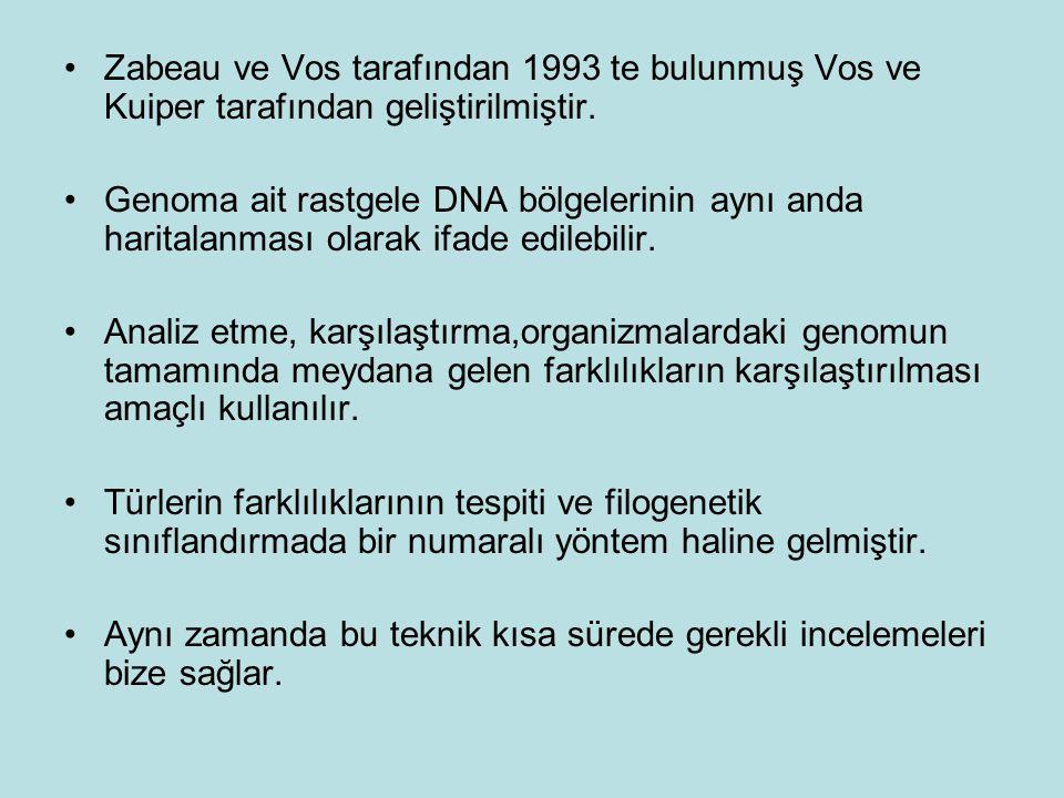 Zabeau ve Vos tarafından 1993 te bulunmuş Vos ve Kuiper tarafından geliştirilmiştir. Genoma ait rastgele DNA bölgelerinin aynı anda haritalanması olar