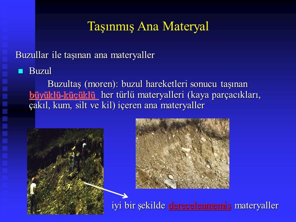 Taşınmış Ana Materyal n Buzul Buzultaş (moren): buzul hareketleri sonucu taşınan büyüklü-küçüklü her türlü materyalleri (kaya parçacıkları, çakıl, kum