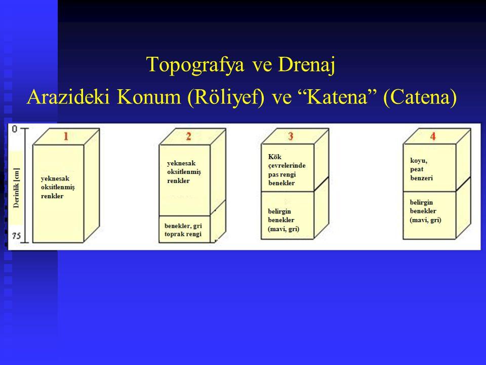 """Arazideki Konum (Röliyef) ve """"Katena"""" (Catena) Topografya ve Drenaj"""