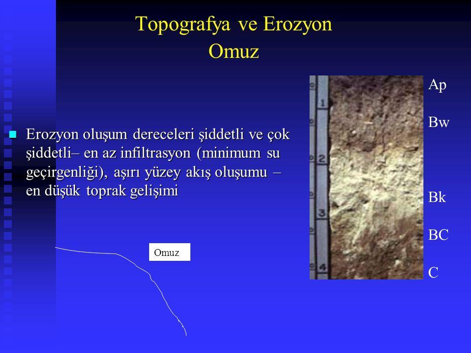 Omuz n Erozyon oluşum dereceleri şiddetli ve çok şiddetli– en az infiltrasyon (minimum su geçirgenliği), aşırı yüzey akış oluşumu – en düşük toprak ge
