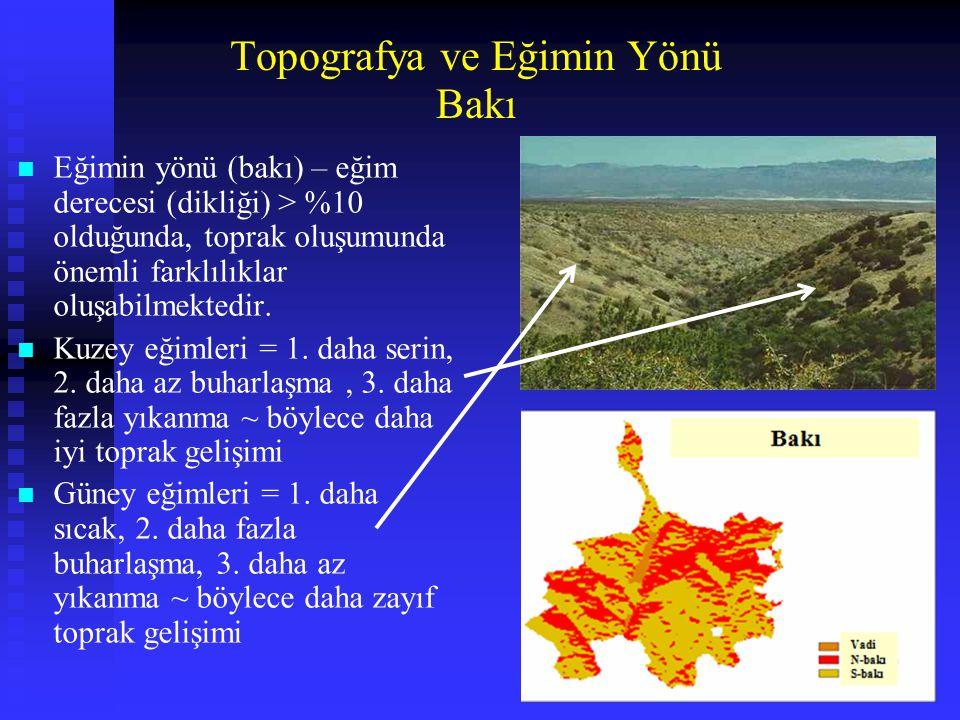 Bakı Topografya ve Eğimin Yönü n Eğimin yönü (bakı) – eğim derecesi (dikliği) > %10 olduğunda, toprak oluşumunda önemli farklılıklar oluşabilmektedir.
