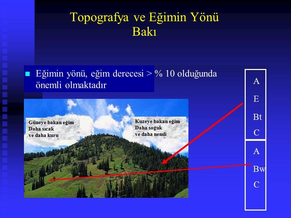 Bakı Topografya ve Eğimin Yönü n Eğimin yönü, eğim derecesi > % 10 olduğunda önemli olmaktadır