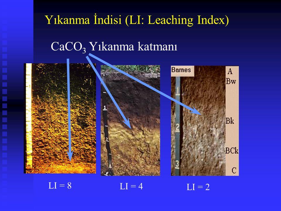 LI = 8 LI = 4 LI = 2 CaCO 3 Yıkanma katmanı Yıkanma İndisi (LI: Leaching Index)