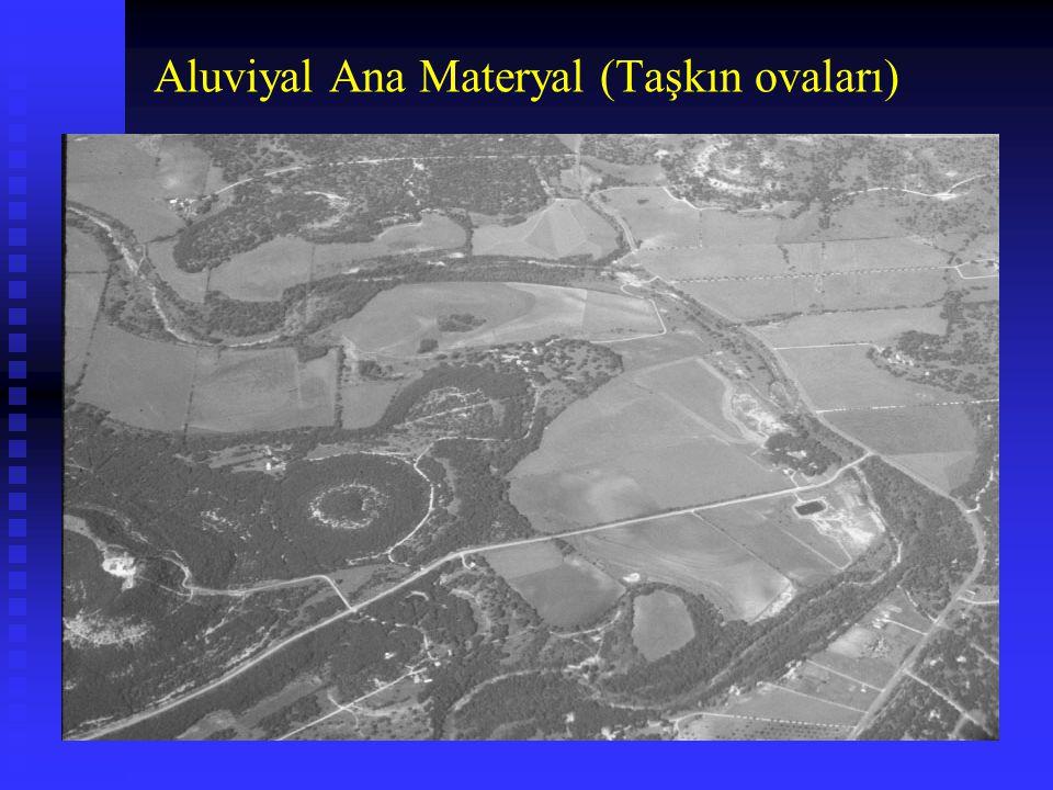 Aluviyal Ana Materyal (Taşkın ovaları)