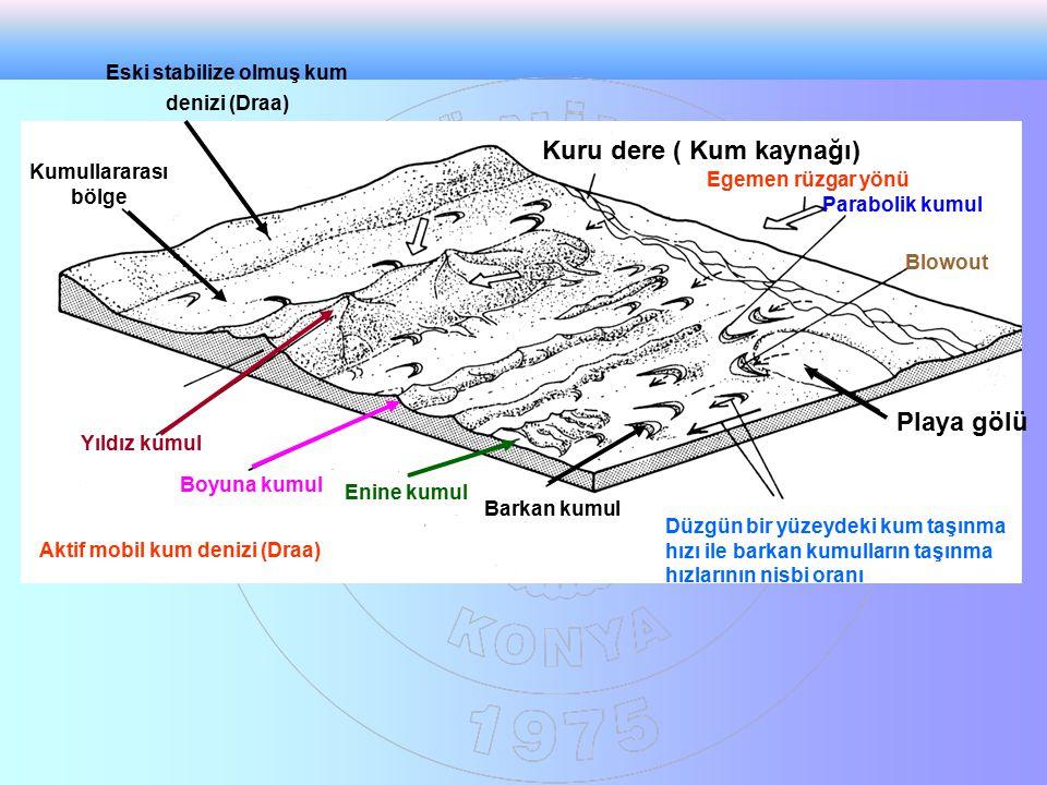 Kuru dere ( Kum kaynağı) Egemen rüzgar yönü Parabolik kumul Barkan kumul Playa gölü Enine kumul Boyuna kumul Yıldız kumul Blowout Düzgün bir yüzeydeki kum taşınma hızı ile barkan kumulların taşınma hızlarının nisbi oranı Kumullararası bölge Eski stabilize olmuş kum denizi (Draa) Aktif mobil kum denizi (Draa)