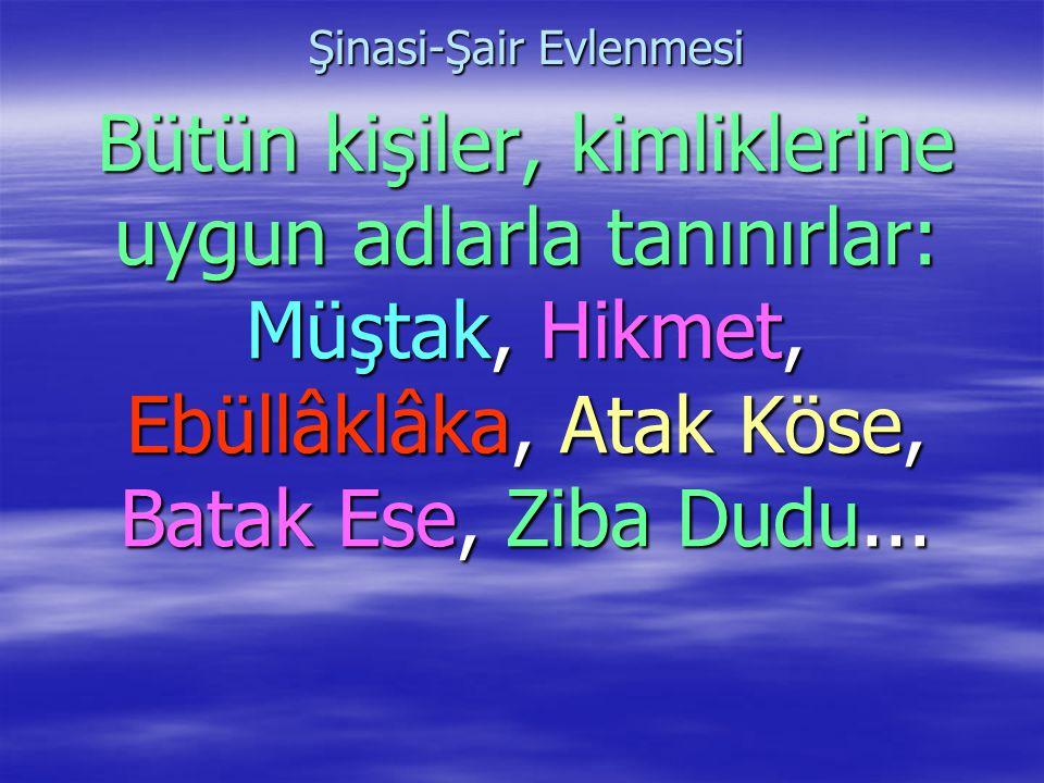 Şinasi-Şair Evlenmesi Bütün kişiler, kimliklerine uygun adlarla tanınırlar: Müştak, Hikmet, Ebüllâklâka, Atak Köse, Batak Ese, Ziba Dudu...