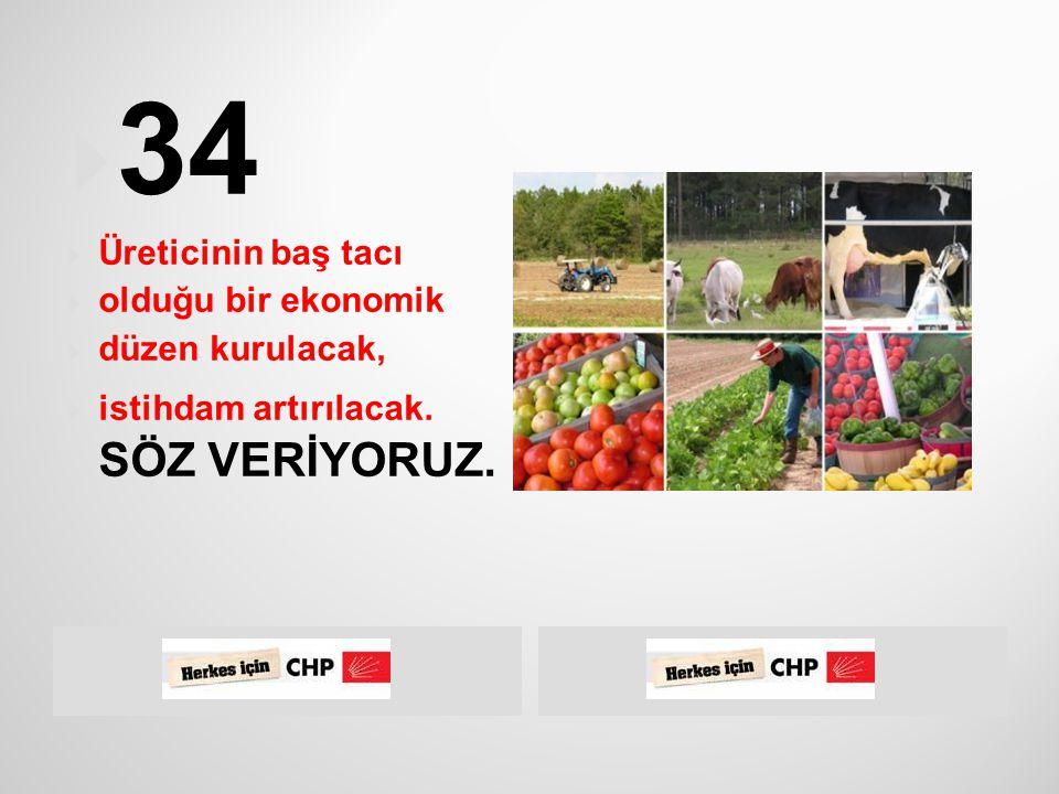  12 Eylül rejiminin en kabul edilemez uygulamalarından biri de Atatürk'ün vasiyetini çiğneyerek Türk Dil Kurumu'nun ve Türk Tarih  Kurumu'nun mevcudiyetlerine son vermesidir.