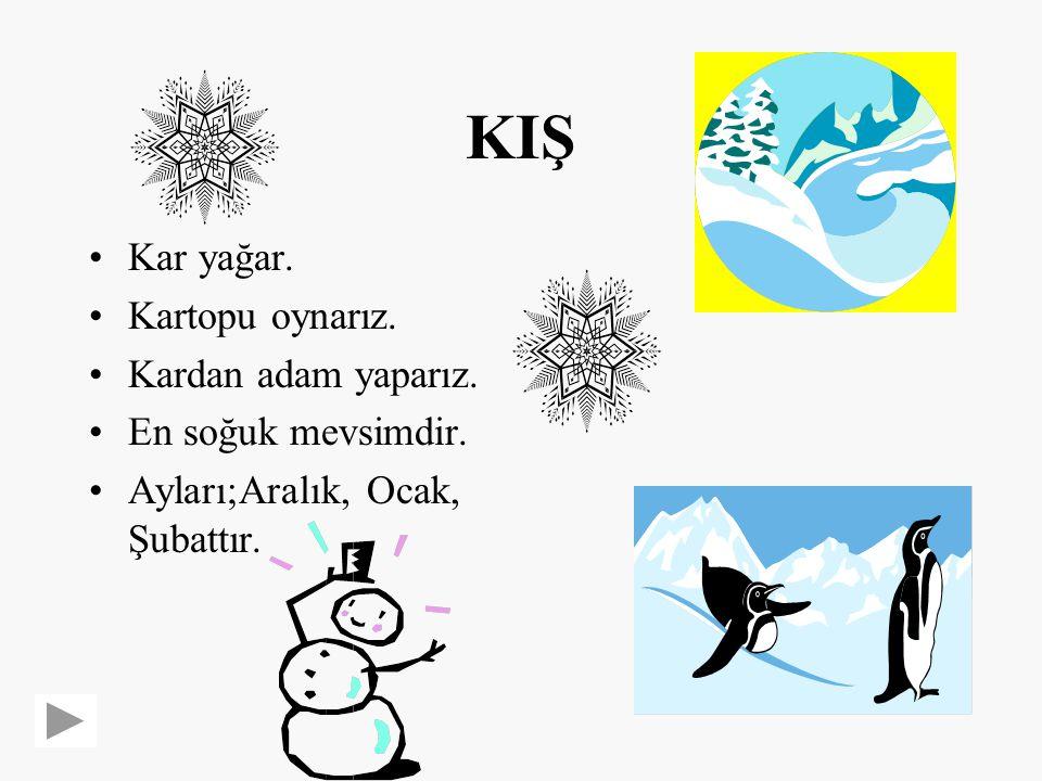 KIŞ Kar yağar.Kartopu oynarız. Kardan adam yaparız.