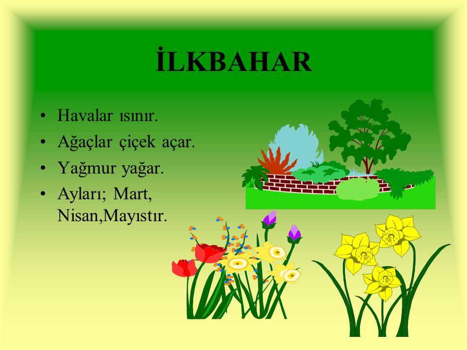 İLKBAHAR Havalar ısınır. Ağaçlar çiçek açar. Yağmur yağar. Ayları; Mart, Nisan,Mayıstır.