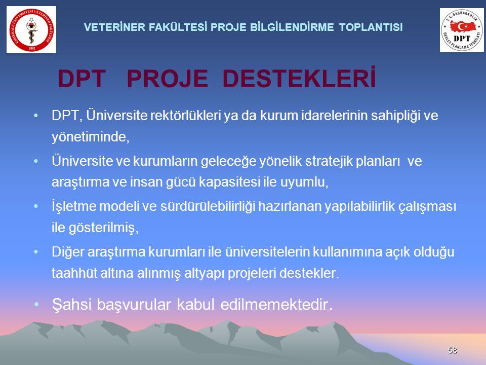 58 DPT, Üniversite rektörlükleri ya da kurum idarelerinin sahipliği ve yönetiminde, Üniversite ve kurumların geleceğe yönelik stratejik planları ve ar
