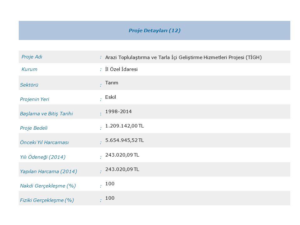 Proje Detayları (12) Proje Adı: Arazi Toplulaştırma ve Tarla İçi Geliştirme Hizmetleri Projesi (TİGH) Kurum:İl Özel İdaresi Sektörü: Tarım Projenin Yeri: Eskil Başlama ve Bitiş Tarihi: 1998-2014 Proje Bedeli: 1.209.142,00 TL Önceki Yıl Harcaması: 5.654.945,52 TL Yılı Ödeneği (2014): 243.020,09 TL Yapılan Harcama (2014): 243.020,09 TL Nakdi Gerçekleşme (%): 100 Fiziki Gerçekleşme (%): 100