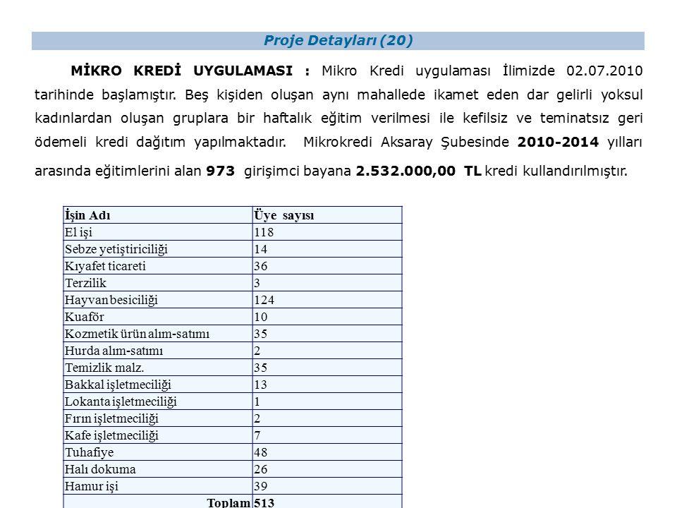 Proje Detayları (20) MİKRO KREDİ UYGULAMASI : Mikro Kredi uygulaması İlimizde 02.07.2010 tarihinde başlamıştır.