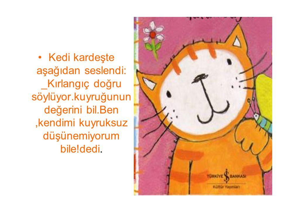 Kedi kardeşte aşağıdan seslendi: _Kırlangıç doğru söylüyor.kuyruğunun değerini bil.Ben,kendimi kuyruksuz düşünemiyorum bile!dedi.