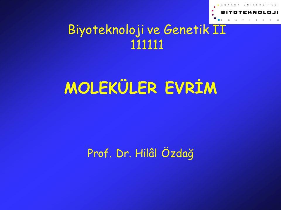 MOLEKÜLER EVRİM Prof. Dr. Hilâl Özdağ Biyoteknoloji ve Genetik II 111111