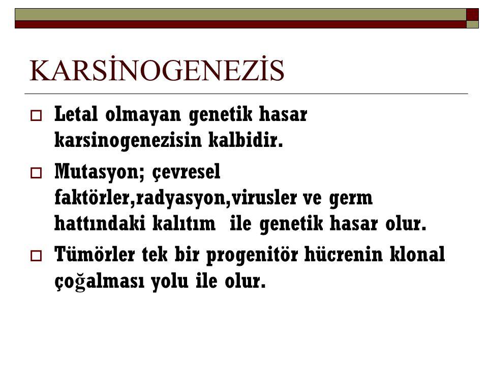 KARSİNOGENEZİS  Letal olmayan genetik hasar karsinogenezisin kalbidir.  Mutasyon; çevresel faktörler,radyasyon,virusler ve germ hattındaki kalıtım i